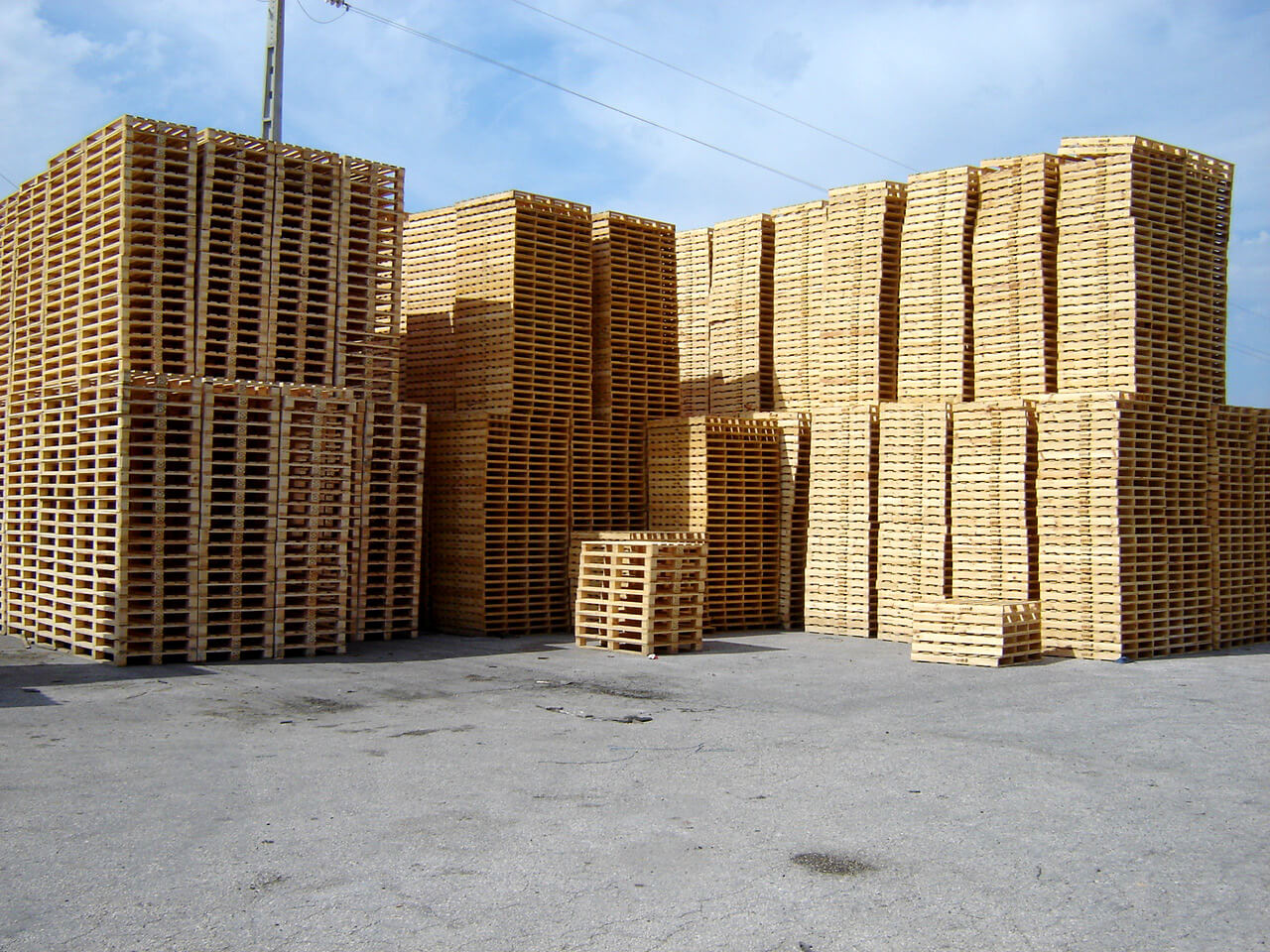 stock paletes portugal pinho nacional